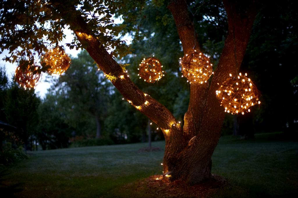 christmas lights in trees outdoors photo - 9