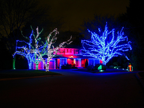 christmas outdoor led lights photo - 1