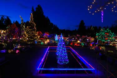 christmas outdoor led lights photo - 4