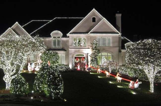 christmas outdoor net lights photo - 5
