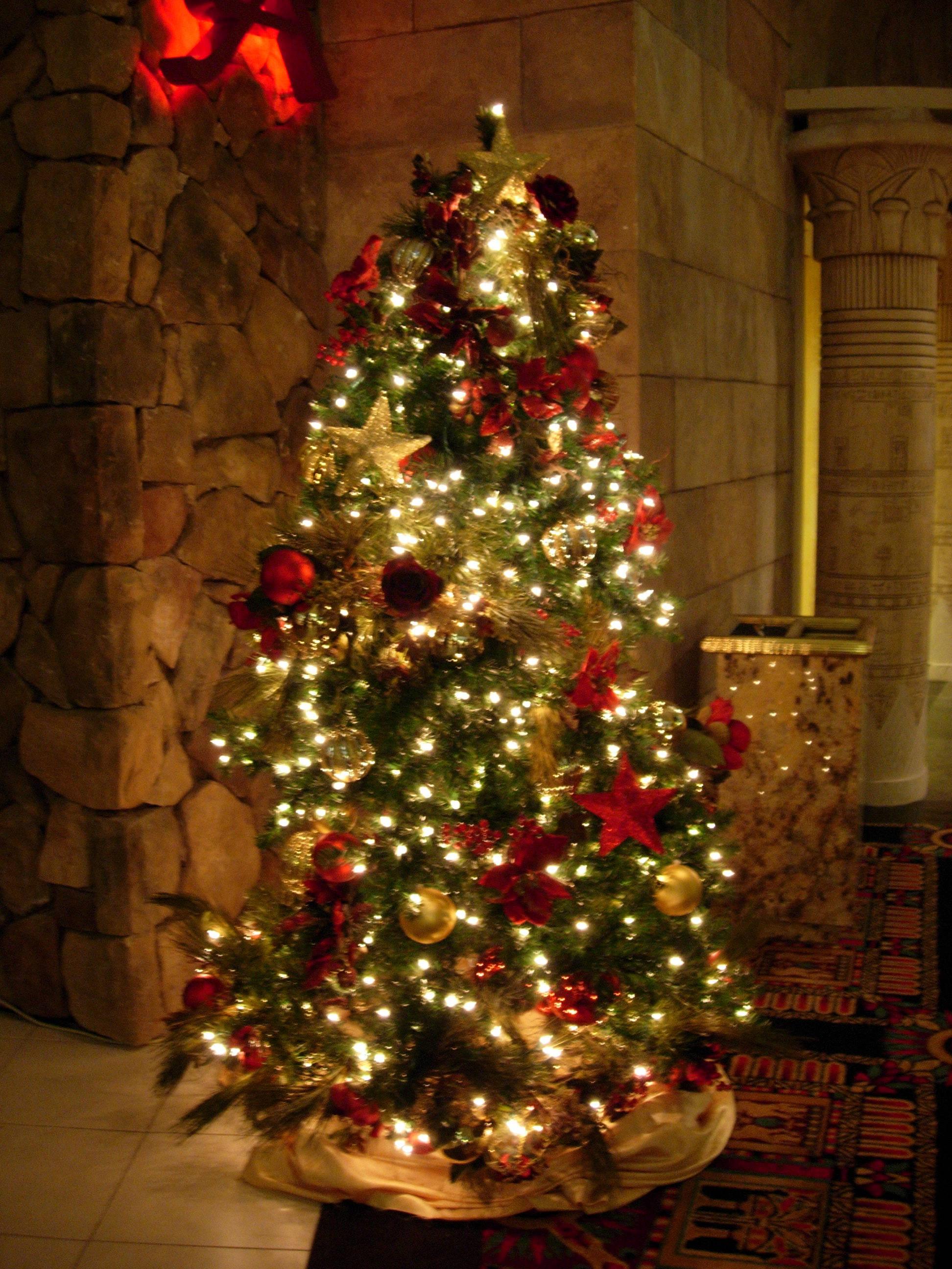 christmas tree of lights on wall photo - 1
