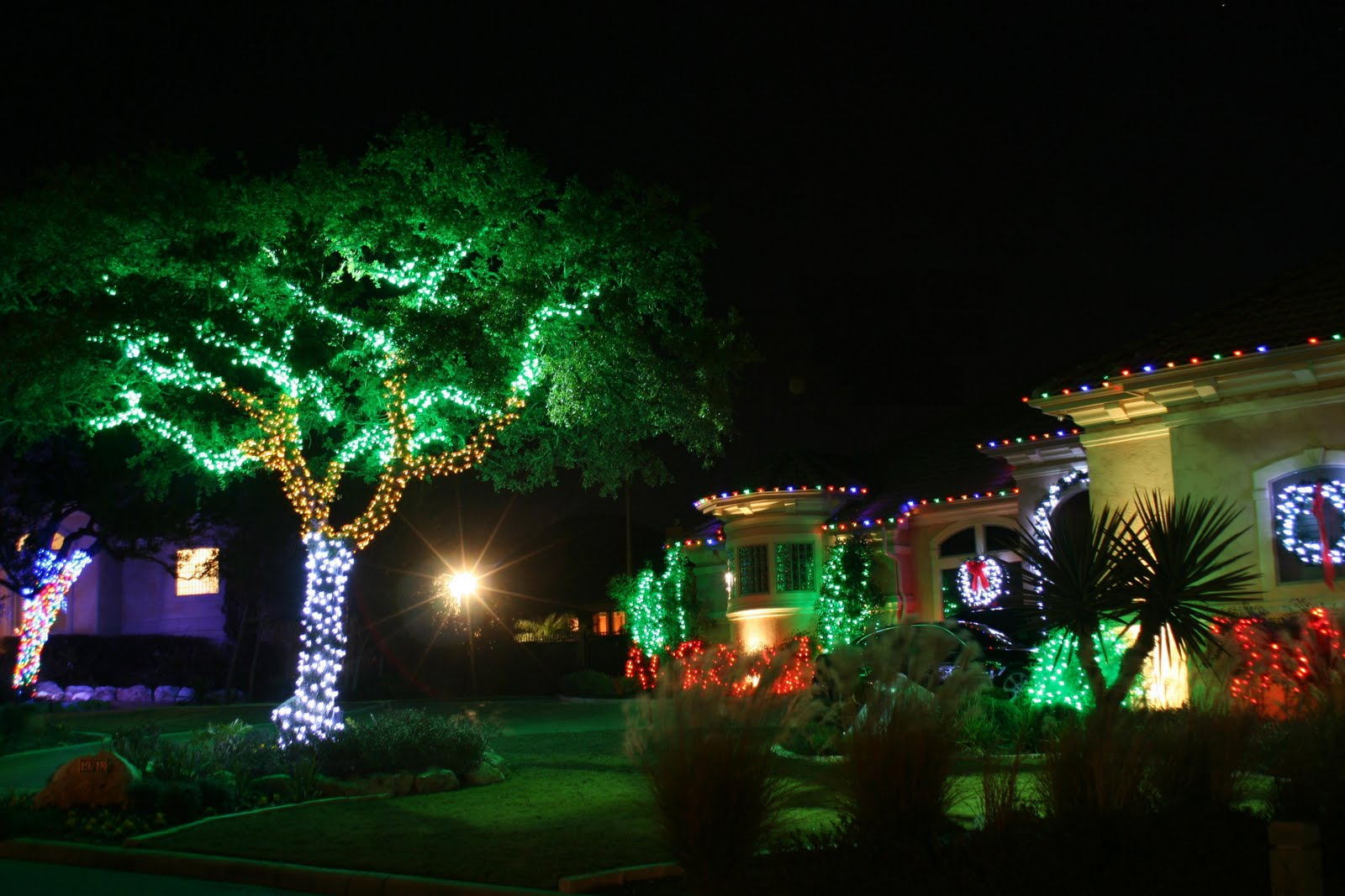 colored outdoor christmas lights photo - 2