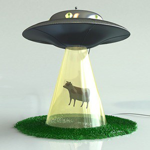 cow abduction lamp photo - 4