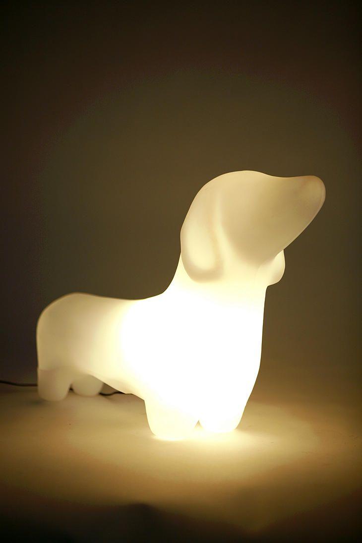 dachshund lamp photo - 9
