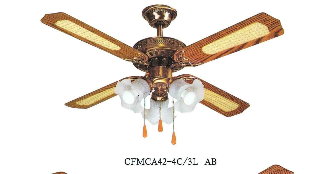 decorative ceiling fans photo - 3