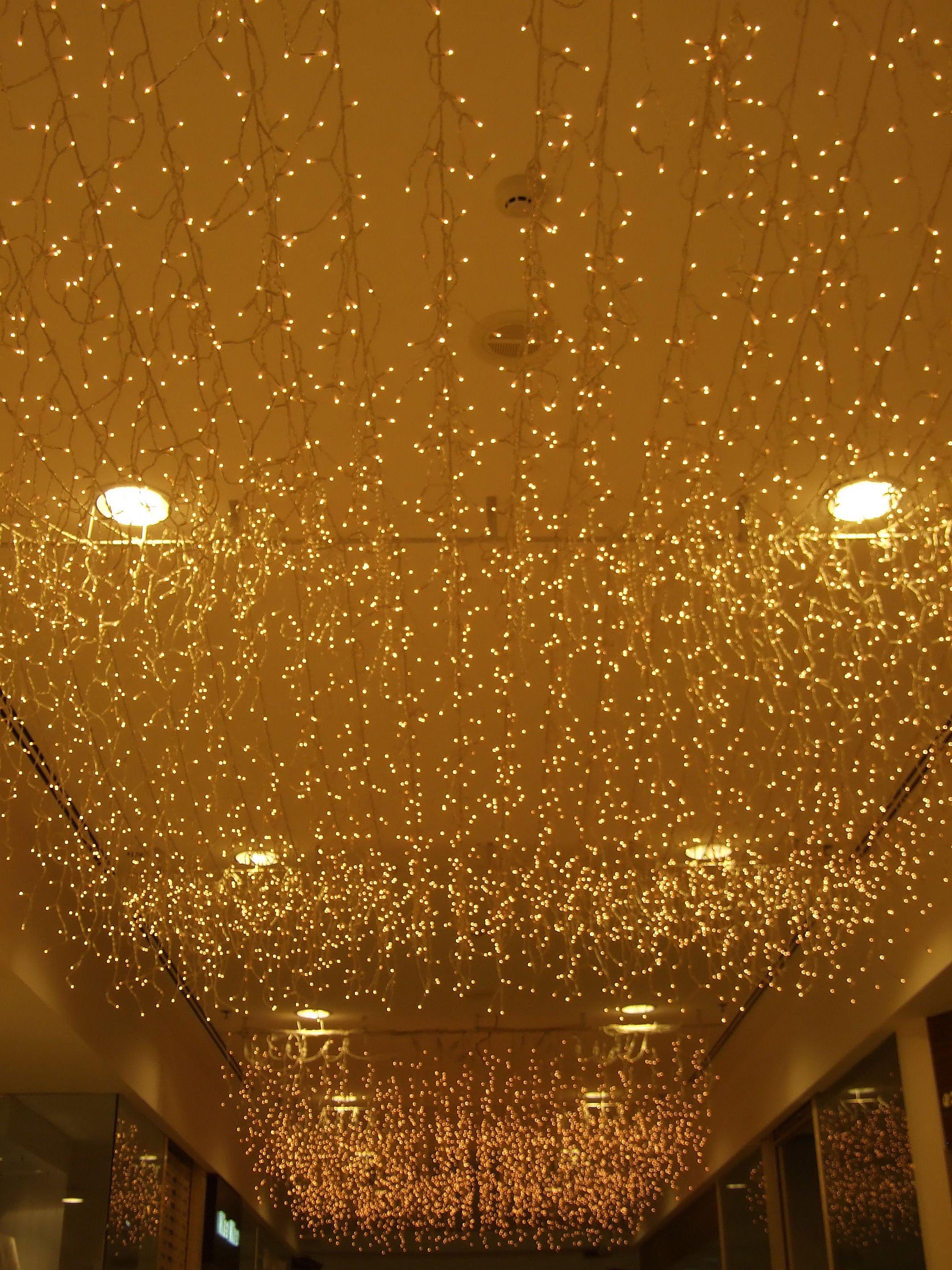 Fairy Light Ceiling: fairy light ceiling photo - 4,Lighting