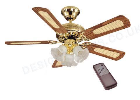 fan ceiling lights photo - 7