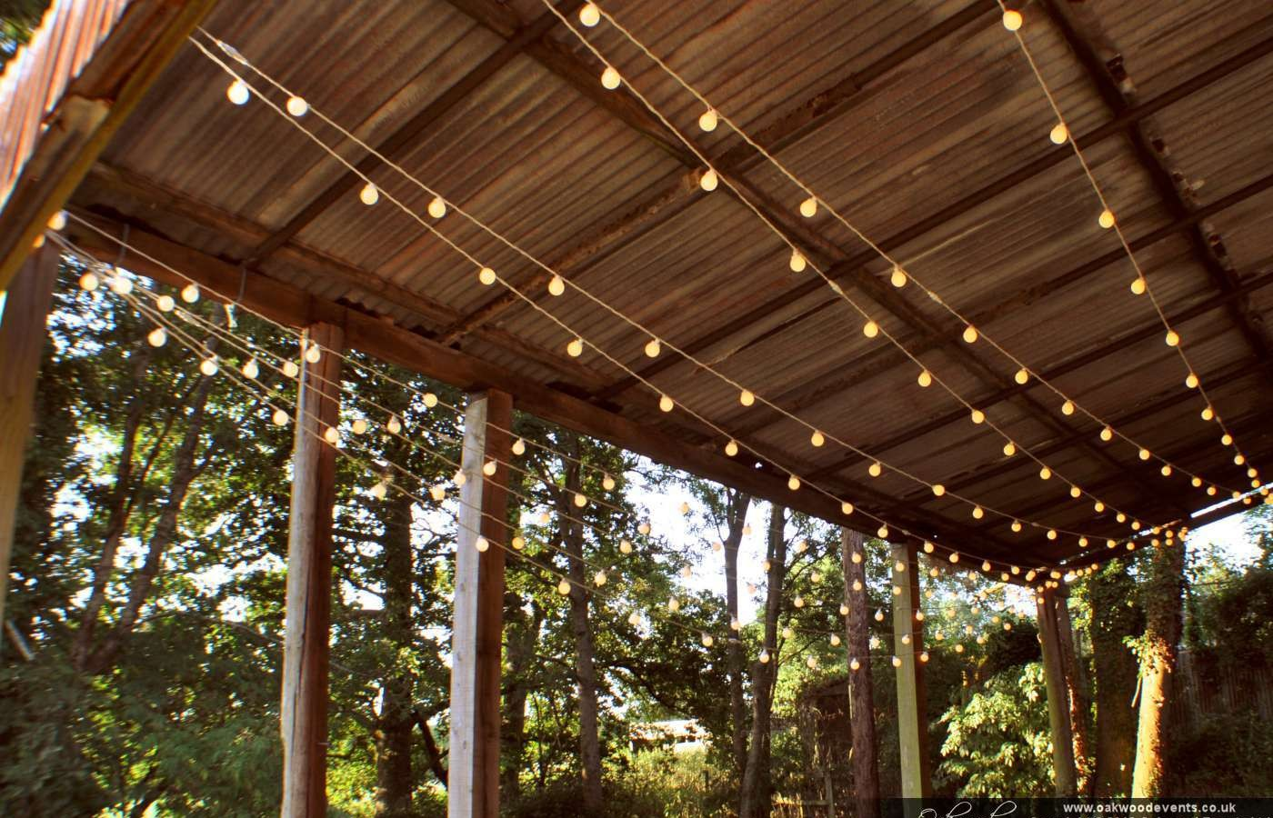 festoon lights outdoor photo - 10