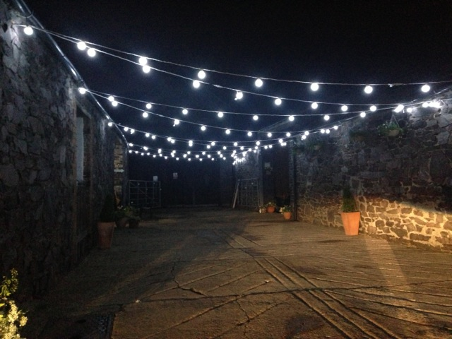 festoon lights outdoor photo - 6