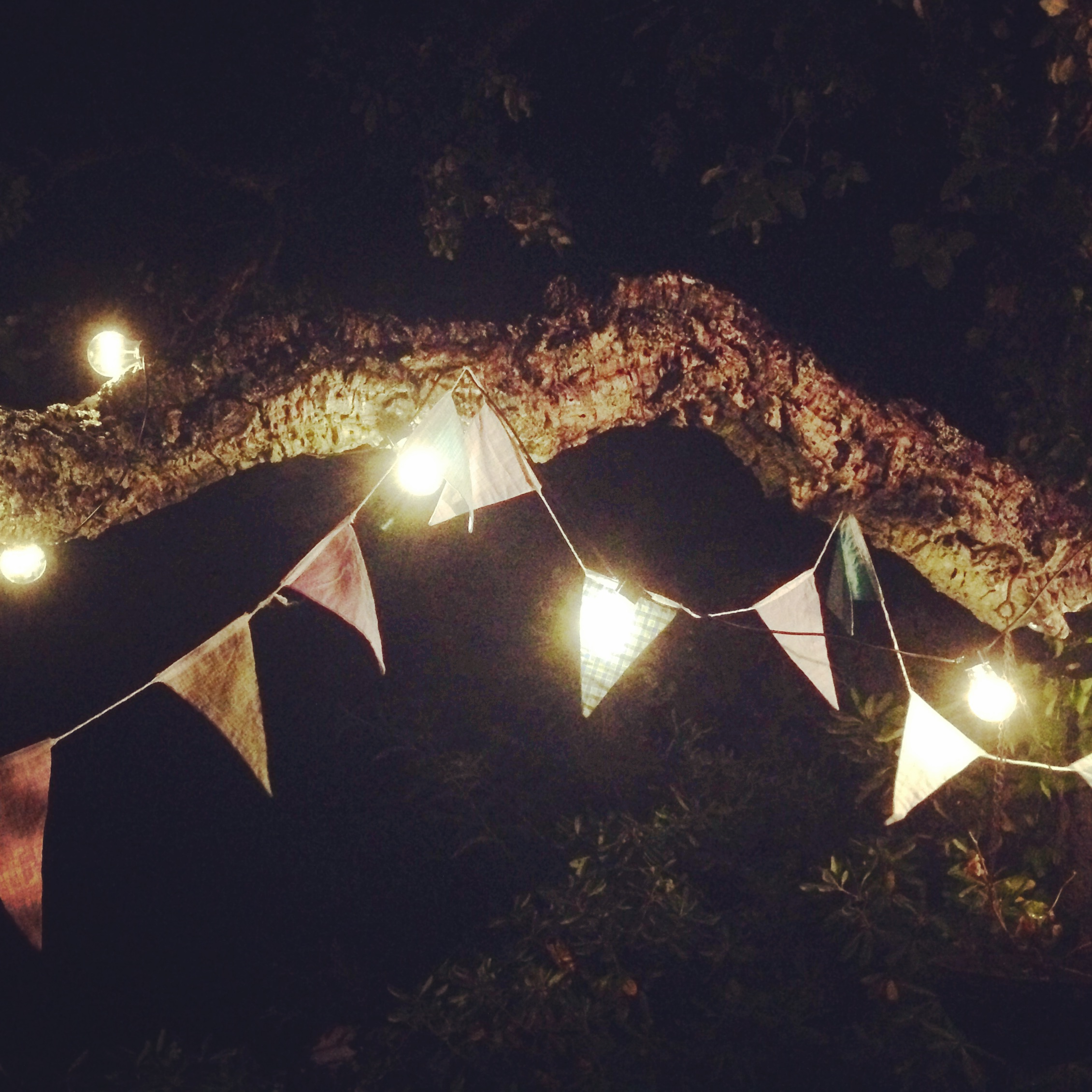 festoon lights outdoor photo - 7