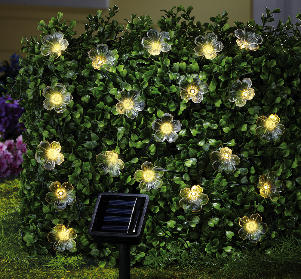 garden outdoor lights photo - 10