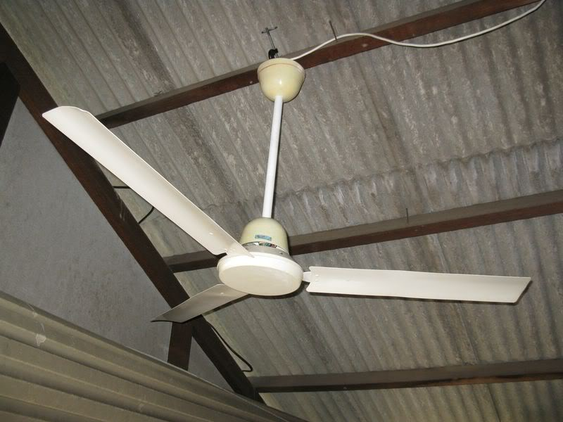 gec ceiling fans photo - 3