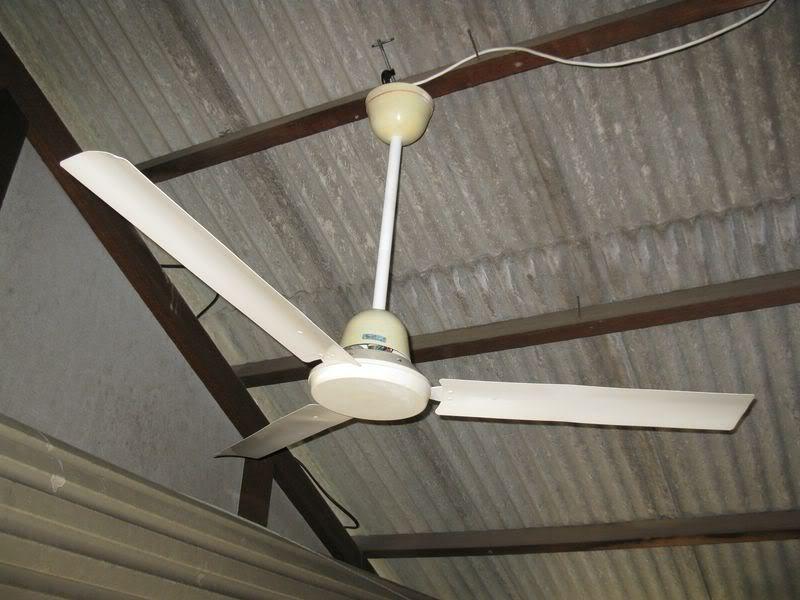 gec ceiling fans photo - 3