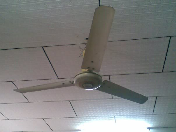 gec ceiling fans photo - 8