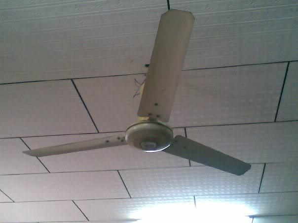 gec ceiling fans photo - 8