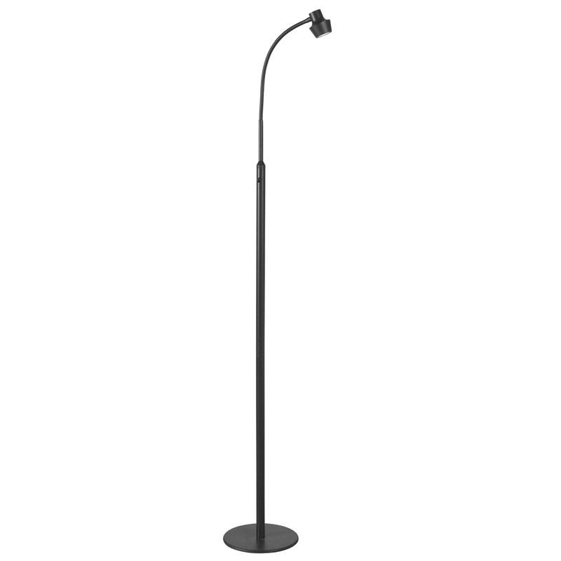 gooseneck floor lamps photo - 1