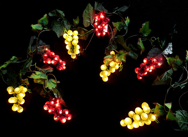 grape lights outdoor photo - 1