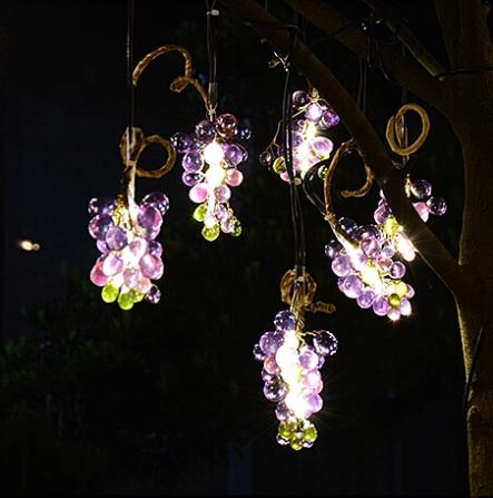 grape lights outdoor photo - 6