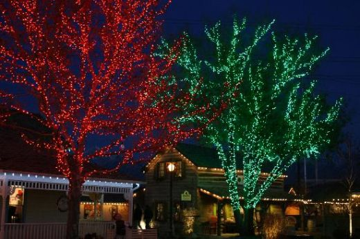 green outdoor christmas lights photo - 1