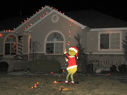 grinch christmas lights outdoor photo - 4