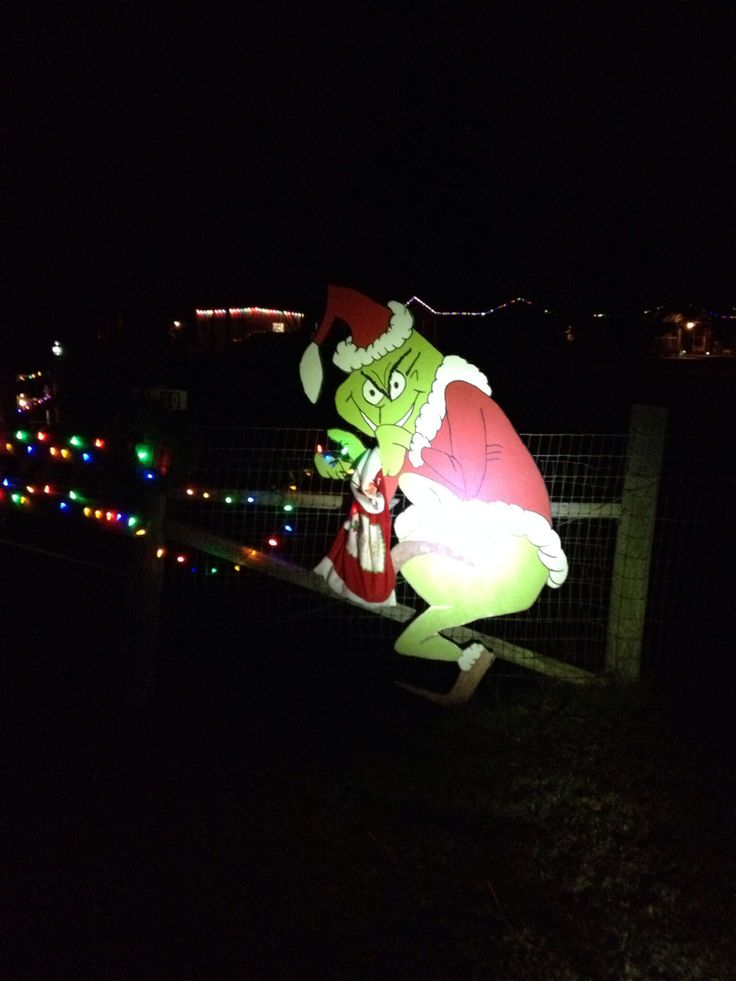grinch christmas lights outdoor photo - 6