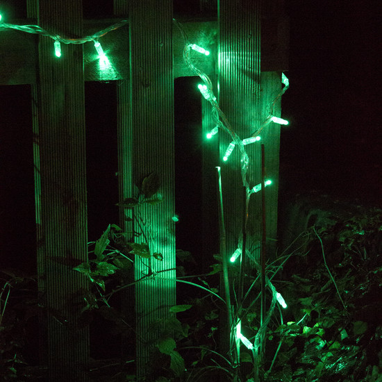 halloween lights outdoor photo - 9