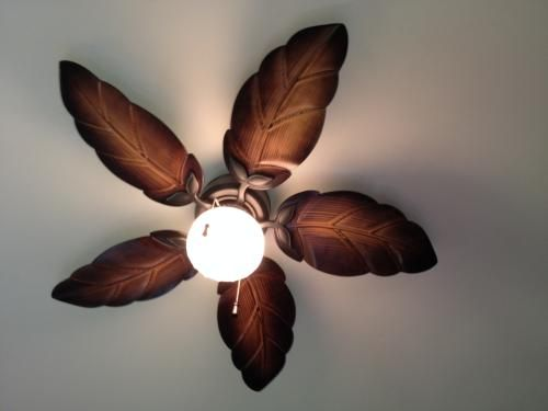 hampton bay nassau ceiling fan photo - 6