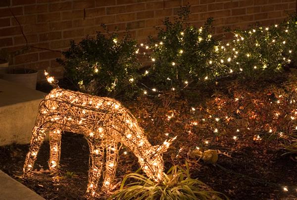 hang outdoor christmas lights photo - 9