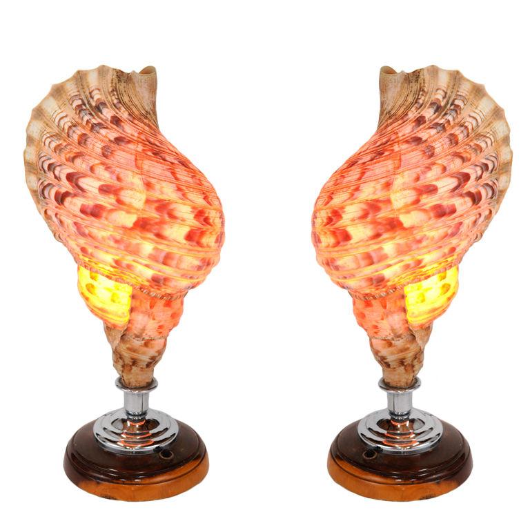 hawaiian lamps photo - 5
