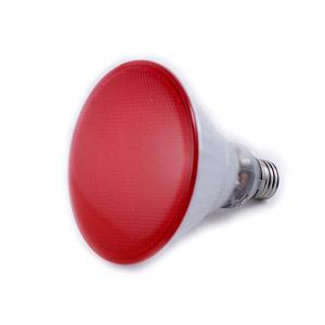 heat lamp photo - 10