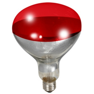 heat lamp bulb photo - 4