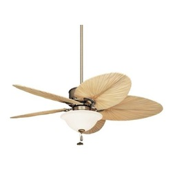 hudson bay ceiling fans photo - 4