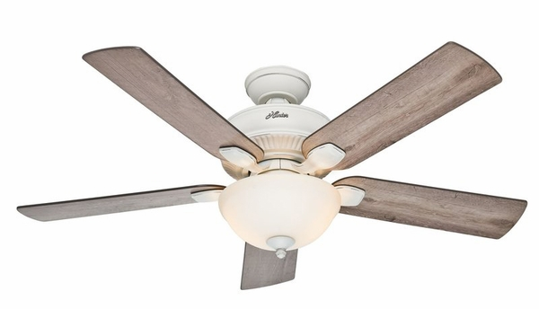 hunter ceiling fan light photo - 10