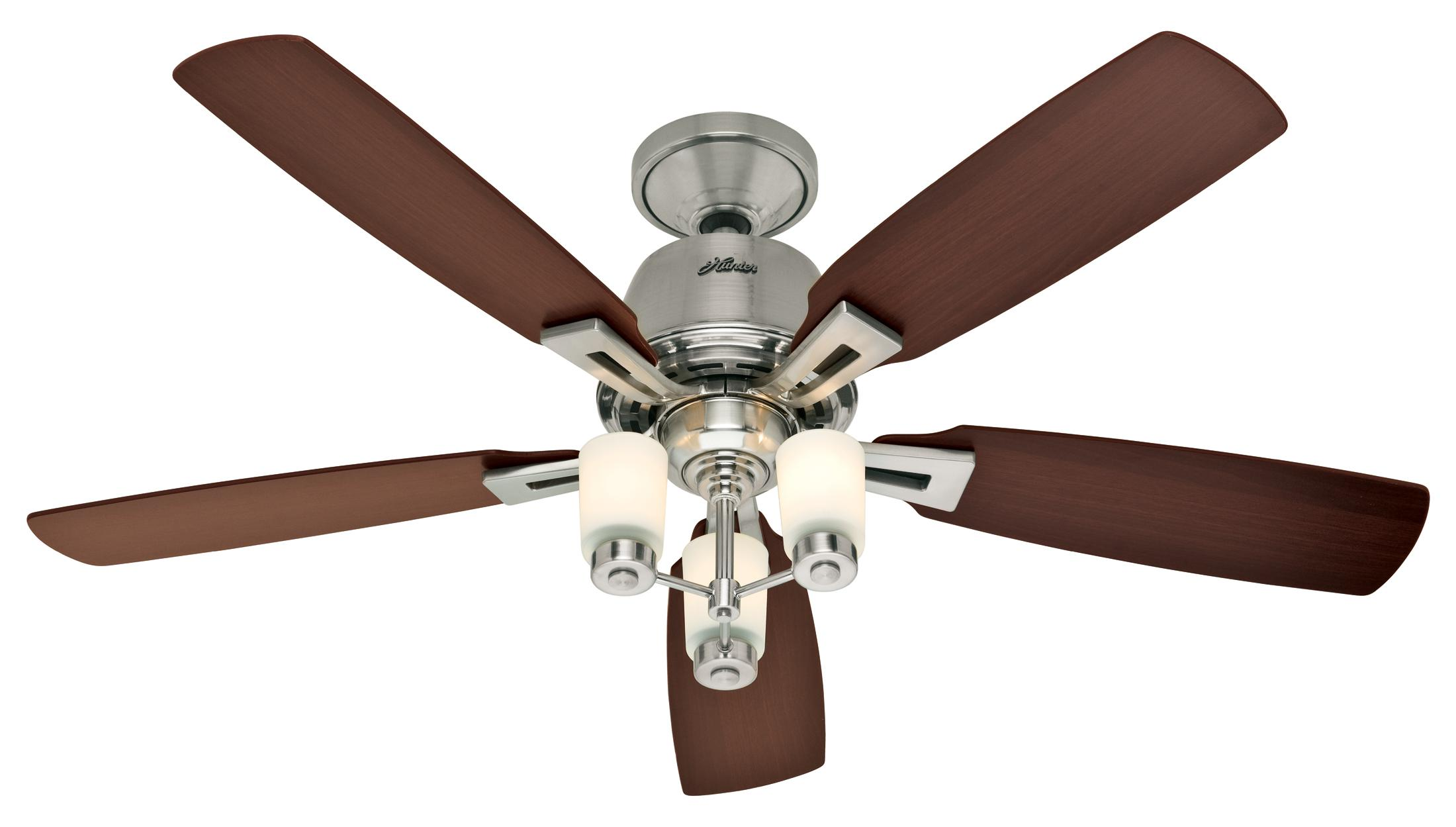 hunter lights and ceiling fans photo - 4