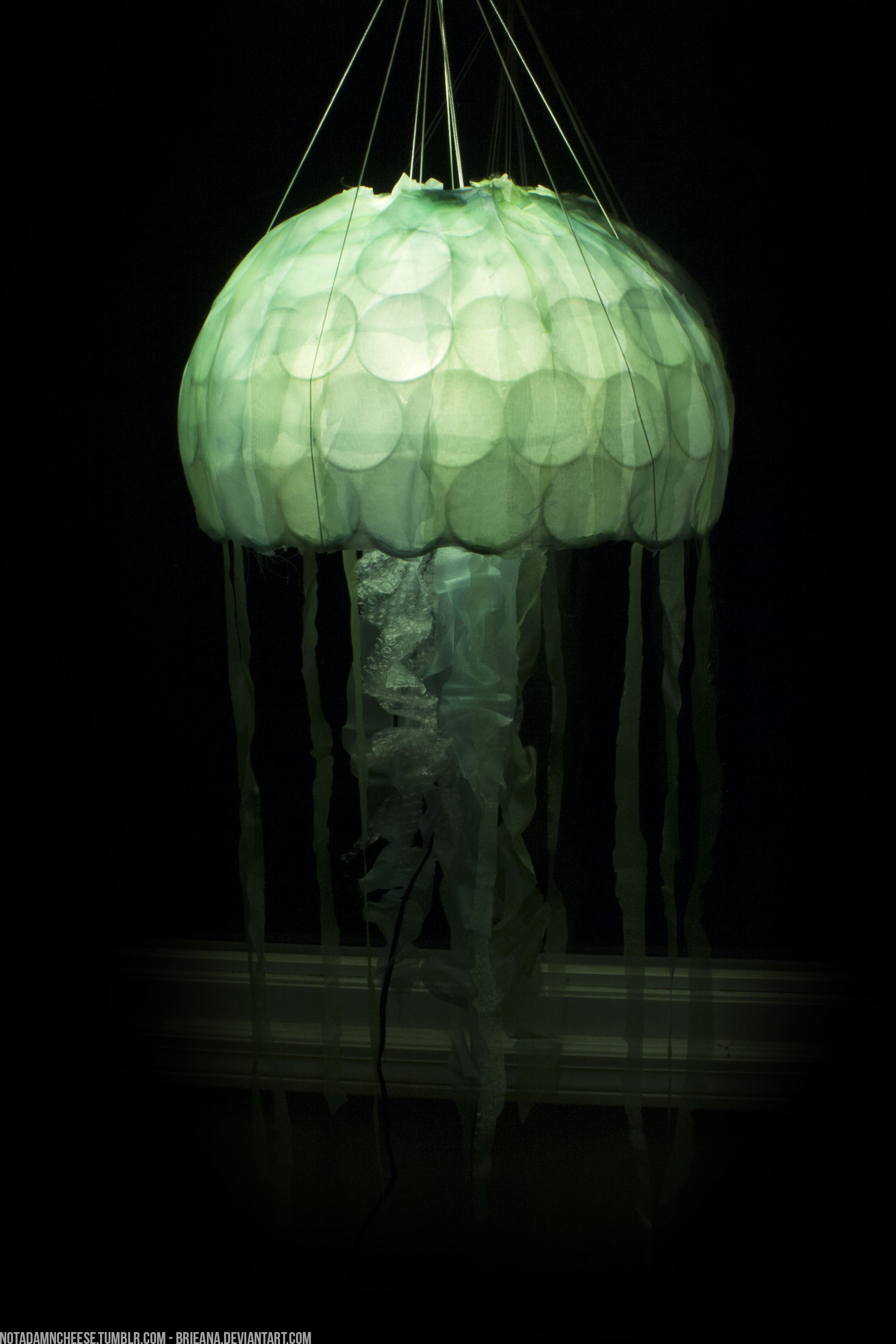 jellyfish lamps photo - 9