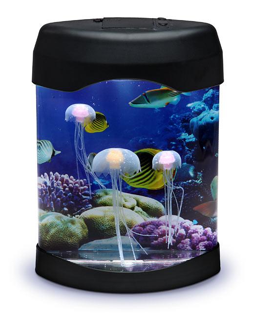 jellyfish lava lamp photo - 1