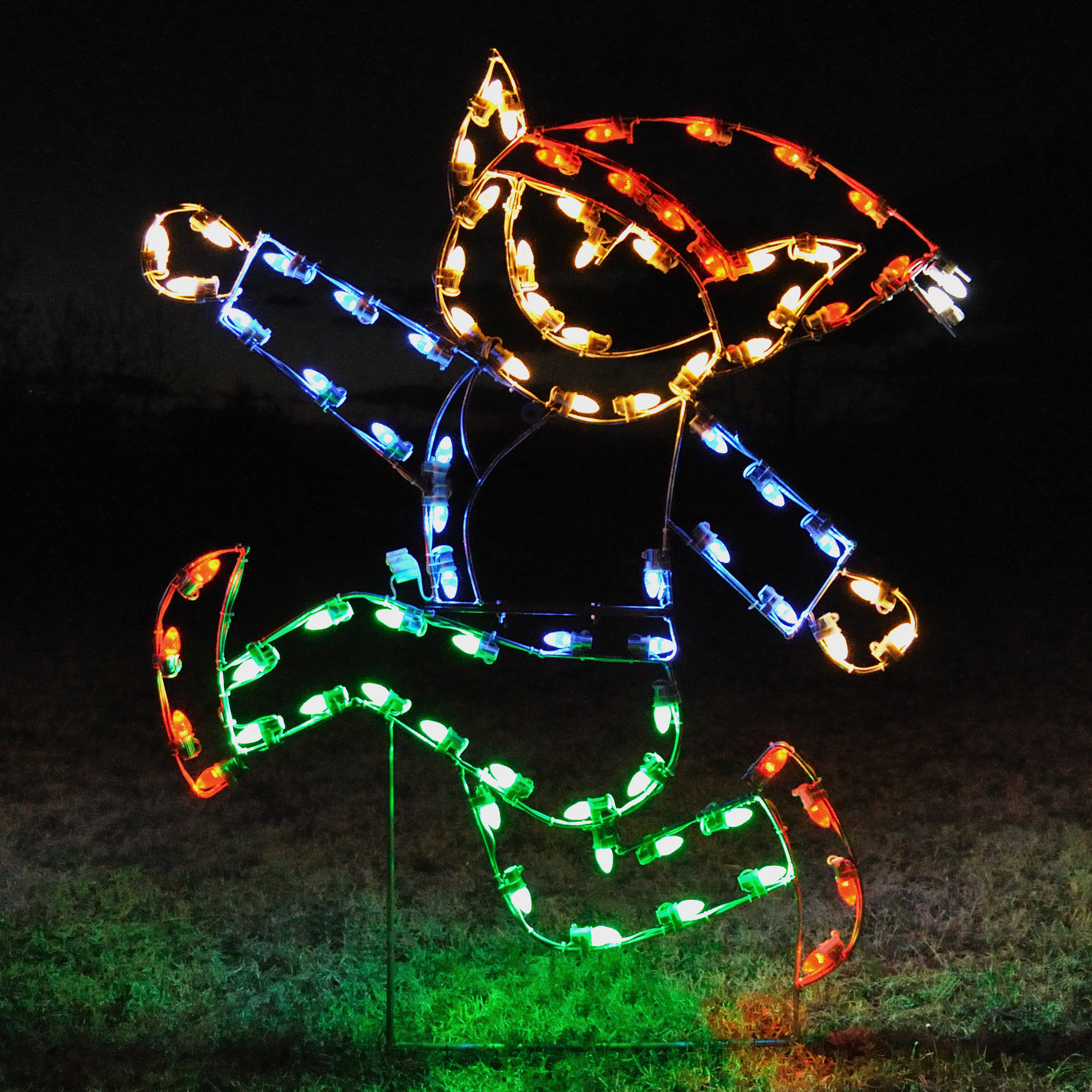 large christmas outdoor lights photo - 4