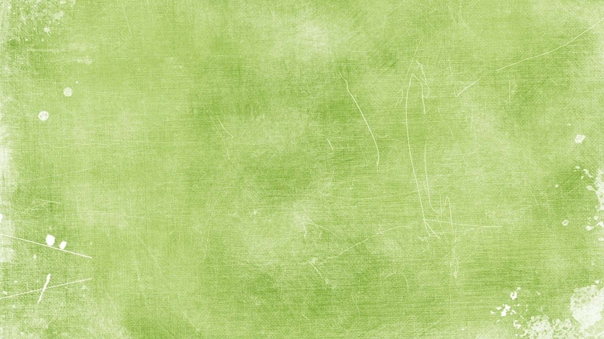 light green wall paper photo - 1