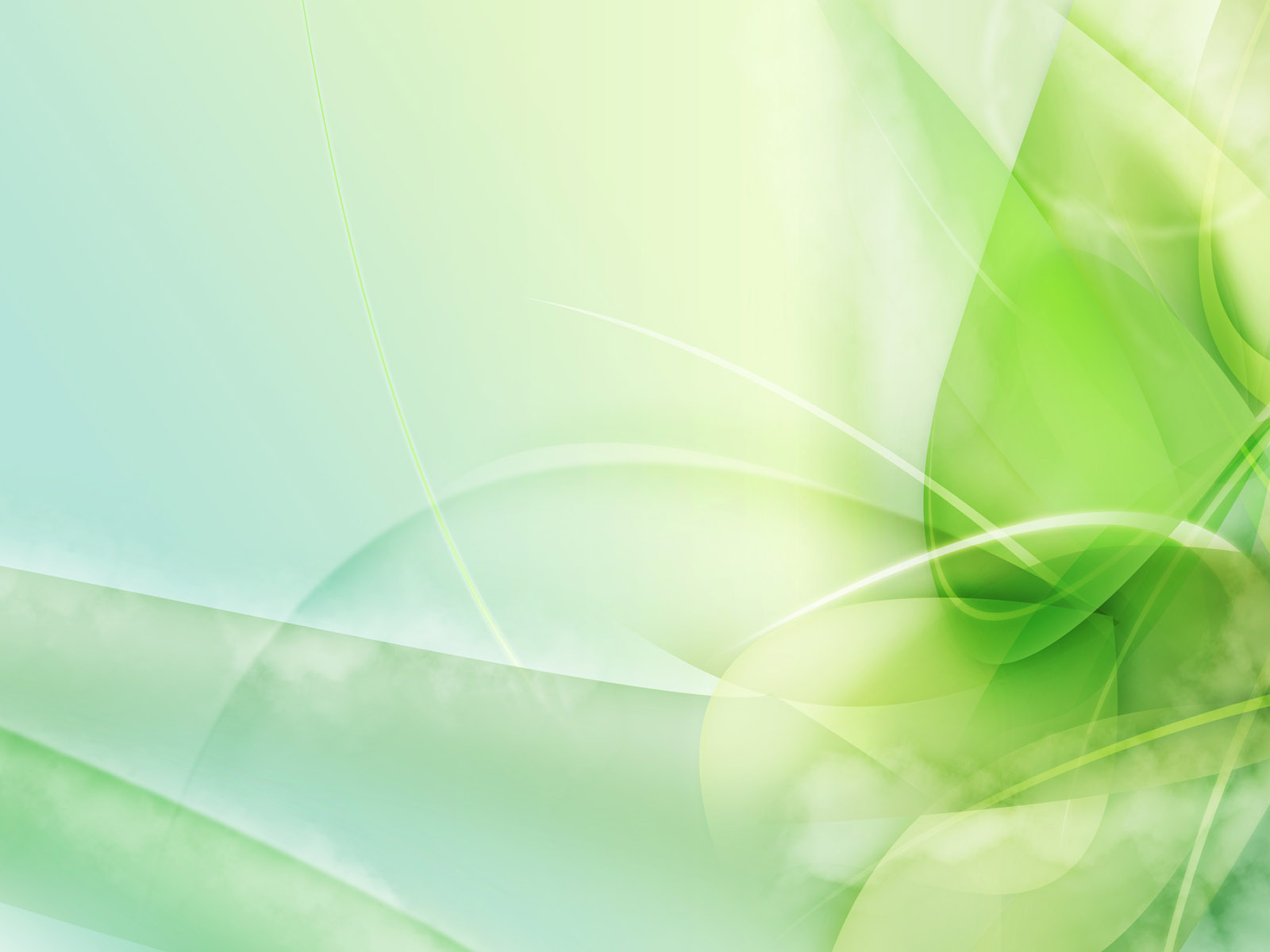 light green wall paper photo - 2