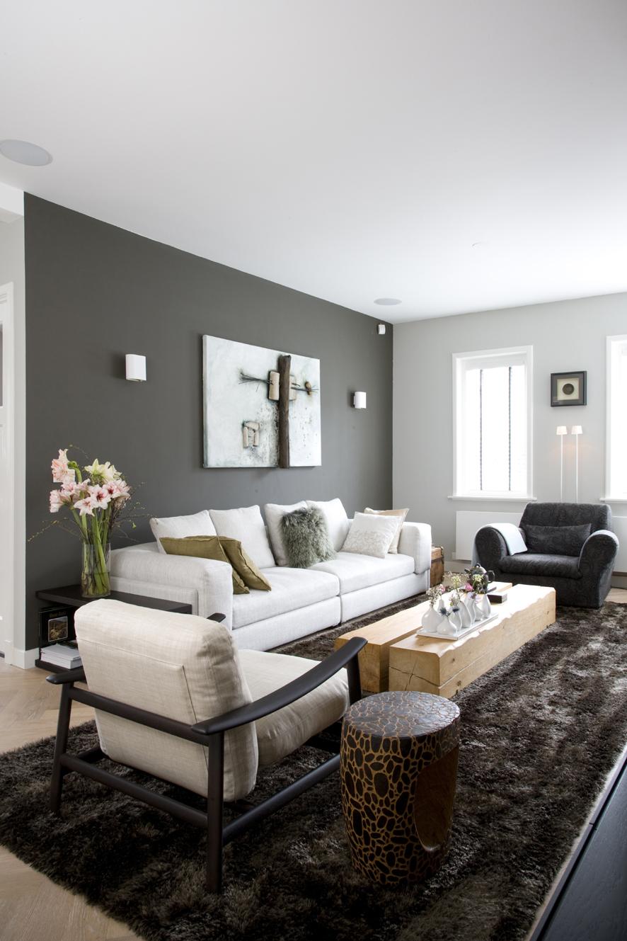 light grey living room walls photo - 1