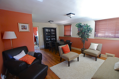light orange wall paint photo - 3