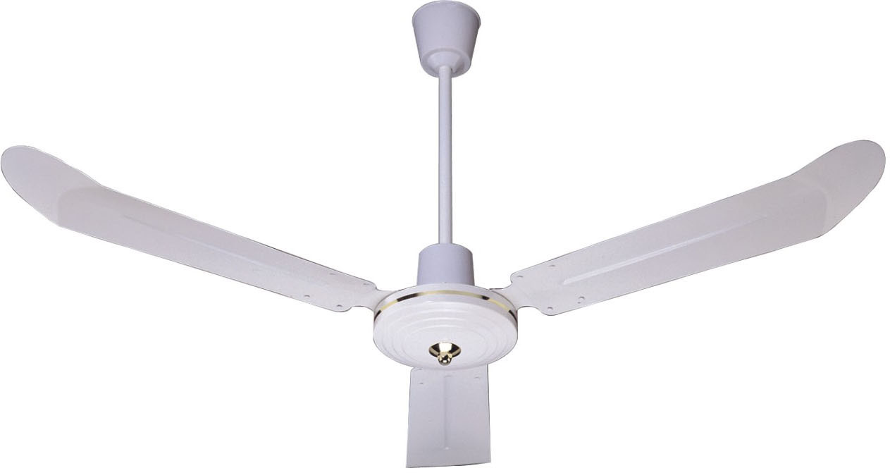 luxury ceiling fans photo - 4