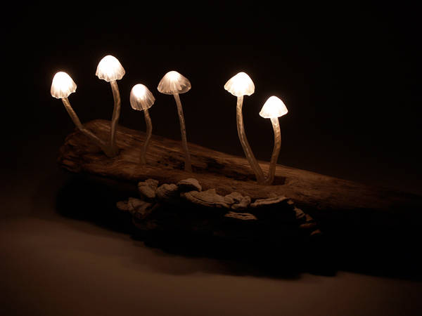 magic mushroom lamp photo - 3