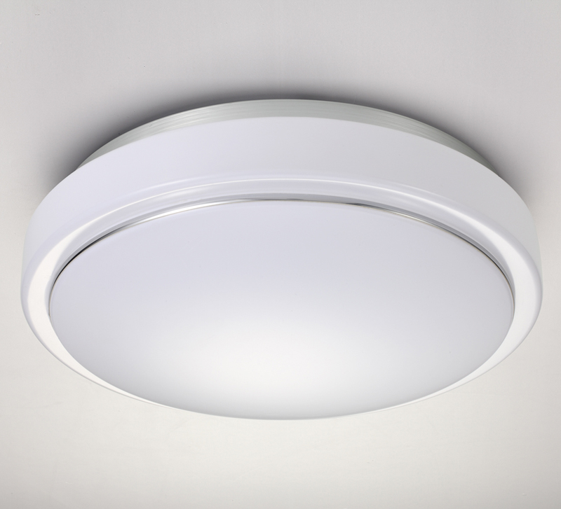 Motion Activated Ceiling Light