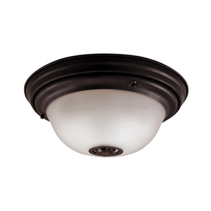 motion activated ceiling light photo - 4