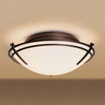 mounted ceiling lights photo - 7