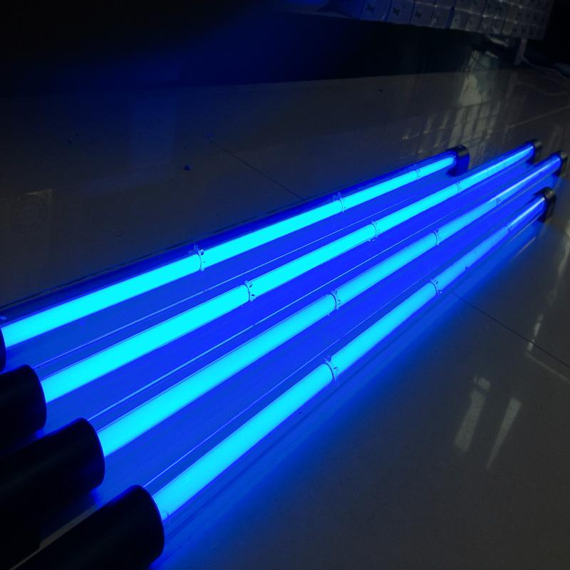 neon lamps photo - 10