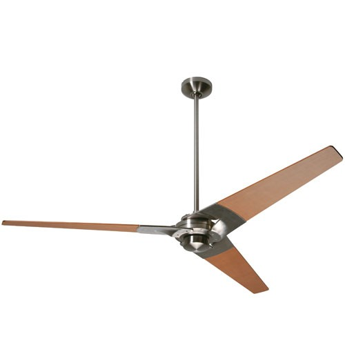 no light ceiling fan photo - 4