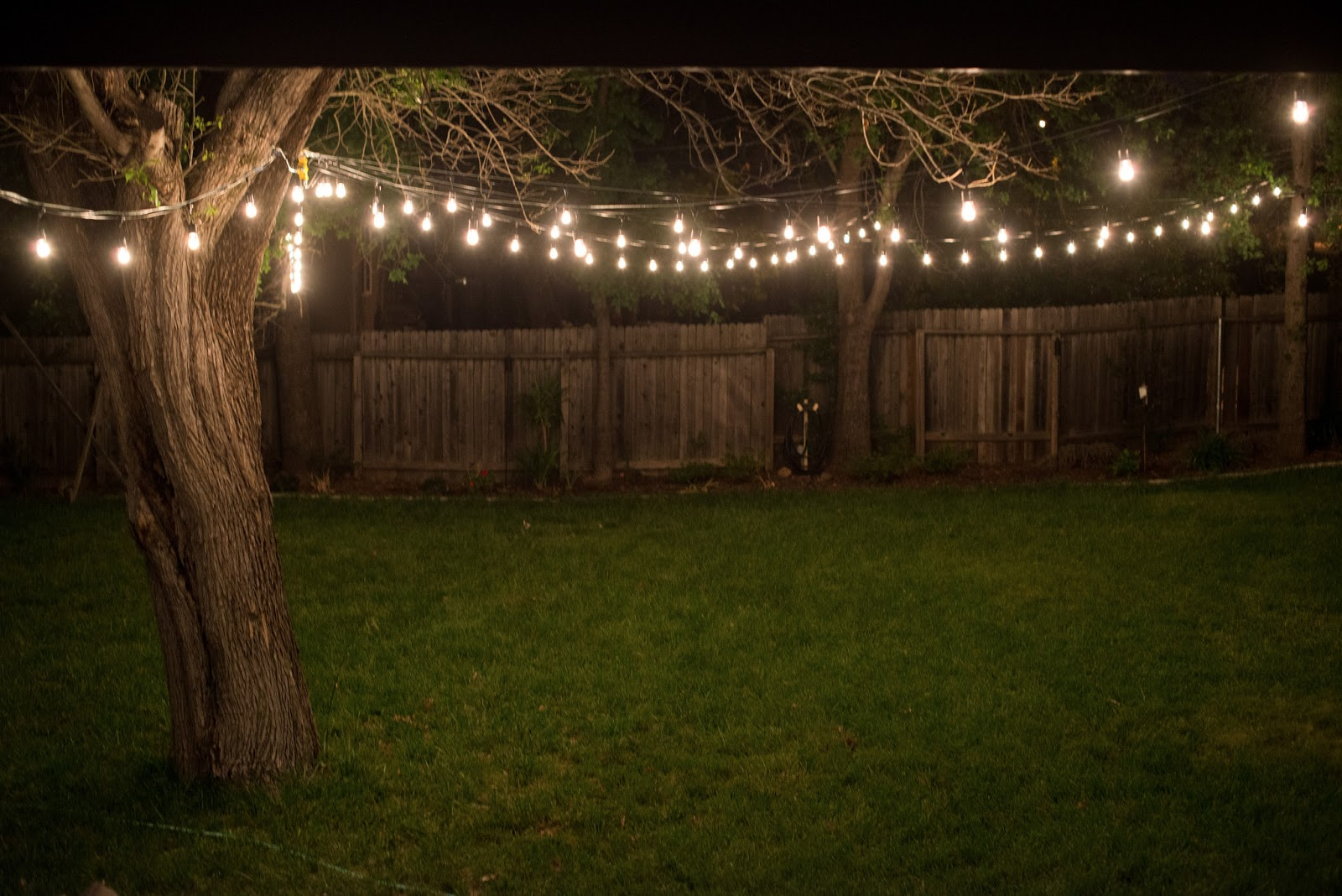outdoor backyard lighting photo - 5