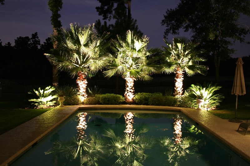 outdoor backyard lighting photo - 7
